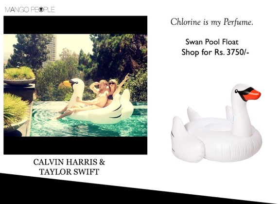 swan-pool-float